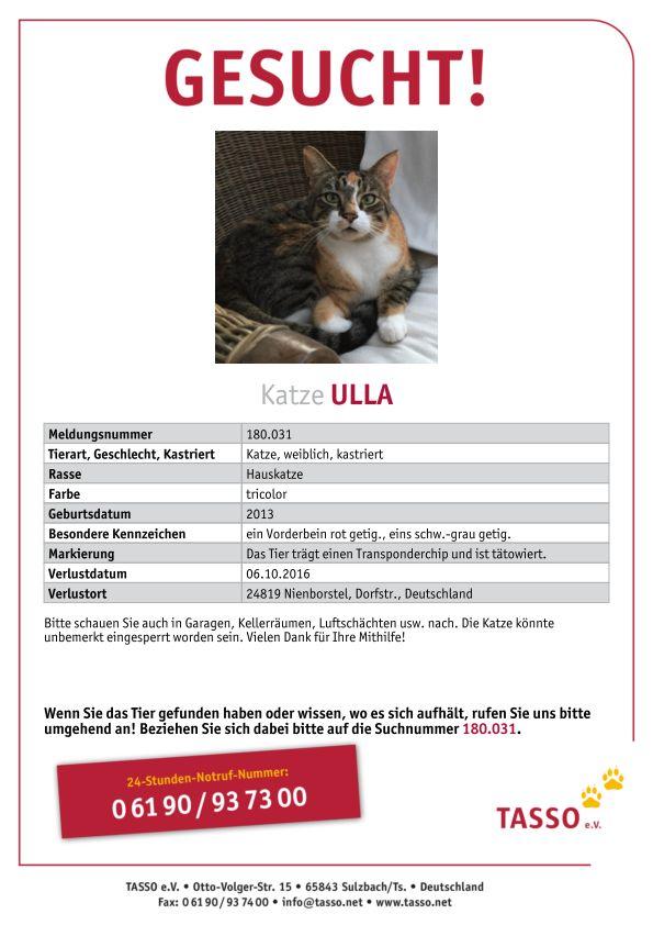 Ziemlich Verlorene Katze Flyer Vorlage Fotos ...
